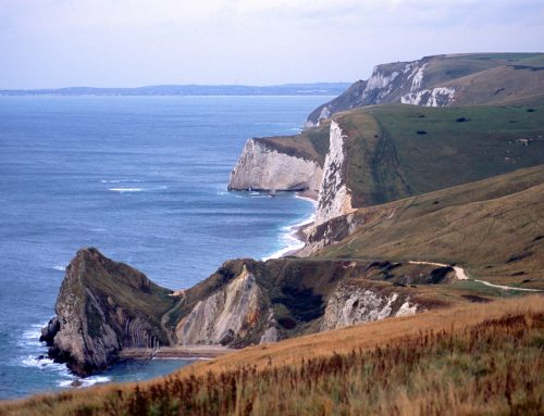 Wednesday Talk 'The Jurassic Coast World Heritage Site' and Cream Tea