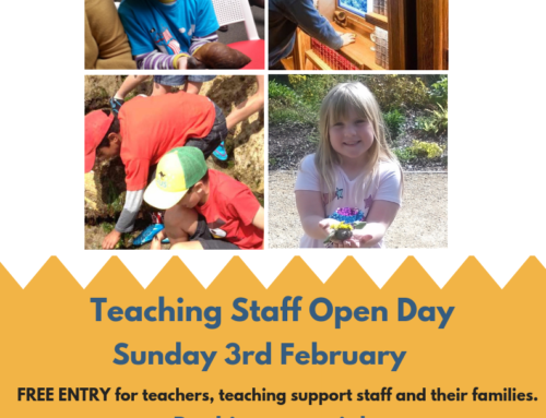 Teaching Staff Free Open Day- 3rd February