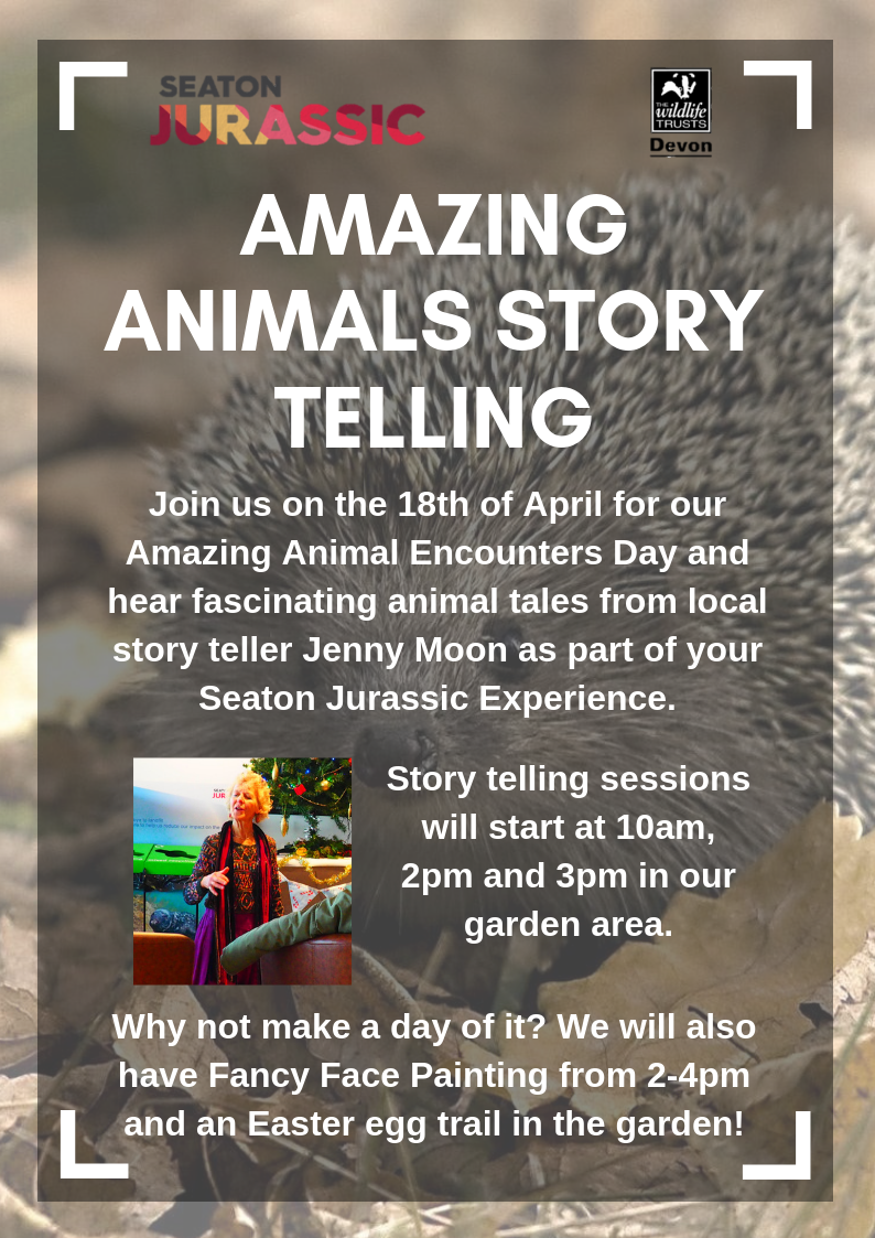 Amazing Animals Story telling