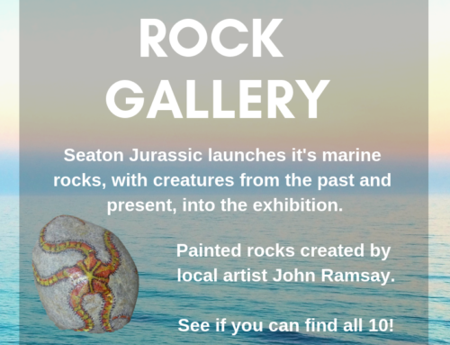 Painted Rock Gallery