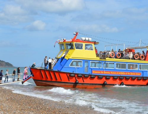 Seaton Bay Cruise – Sunday 12th July